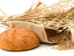 Празник на хляба, житото и Добруджа