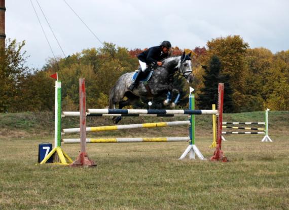 Кардам ще домакинства на турнира по конен спорт в памет на доц. Тодор Тодоров